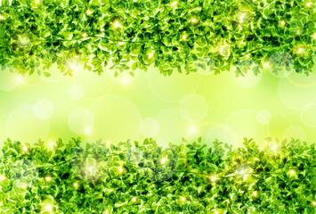 Naklejka緑のフレーム