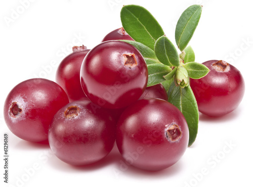 Fotografia  Cranberries with leaves.