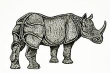 Disegno A Mano Libera Di Rinoceronte Indiano