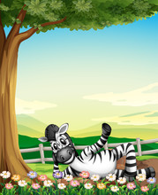 A Smiling Zebra Under The Tree...