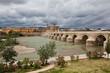 Римский мост (Puente Viejo) над рекой Гвадалквивир. Кордова.