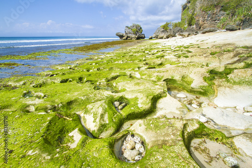 Photo  Green Reef at deserted beach