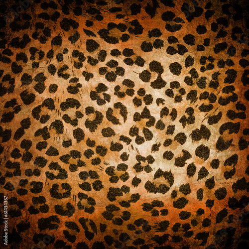 Obrazy na płótnie Canvas Animal pattern
