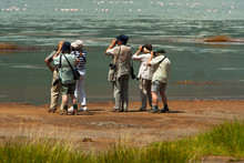 Group Of Seniors On Photo Safari In Africa Observing Animals