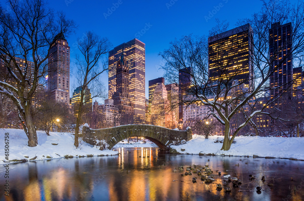 Fototapety, obrazy: Gapstow bridge in winter, Central Park