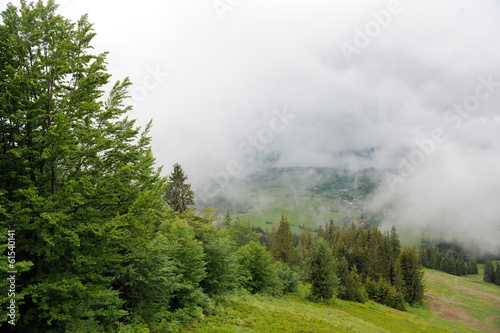 Photo sur Aluminium Jungle Mountain landscape