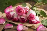 Różowo białe róże