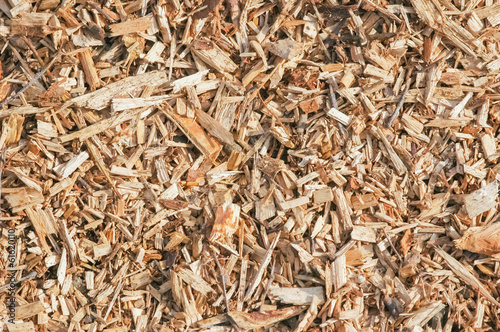 Fényképezés  background of wood chip mulch