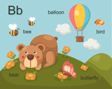 Alphabet.B letter.bee,bear,bal loon,bird,butterfly .
