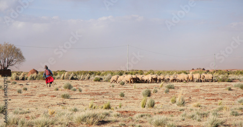 Cadres-photo bureau Amérique du Sud Old Woman Shepherd and flock of sheep in Bolivia, South America