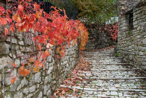 droga-z-czerwonymi-liscmi-w-tradycyjnej-wiosce-w-epirus-grecja