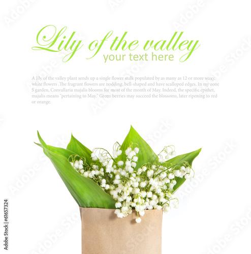 Staande foto Lelietje van dalen lily of the valley in a paper bag