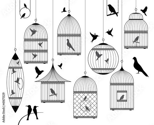 Photo  birds and birdcages collection