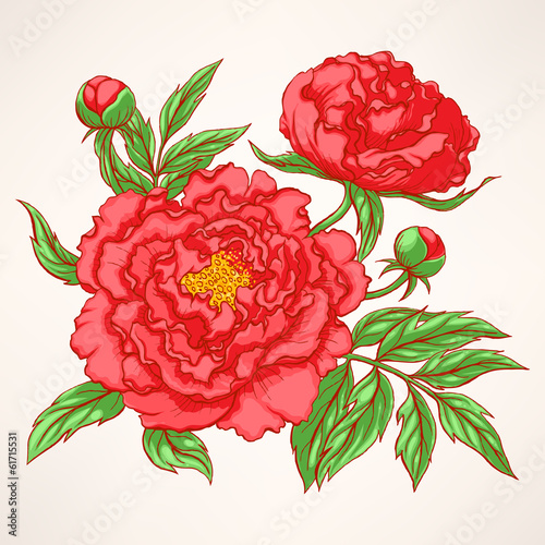 red peonies - 61715531