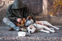 Beggar With Two Dogs Near Charles Bridge, Prague