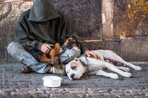 Photo  beggar with two dogs near Charles bridge, Prague