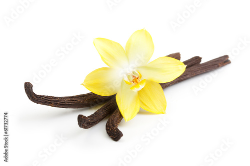Fotografía  Vanilla pods and orchid flower isolated on white background