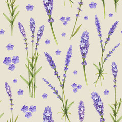 Fototapeta Lawenda Lavender flower illustrations. Watercolor pattern