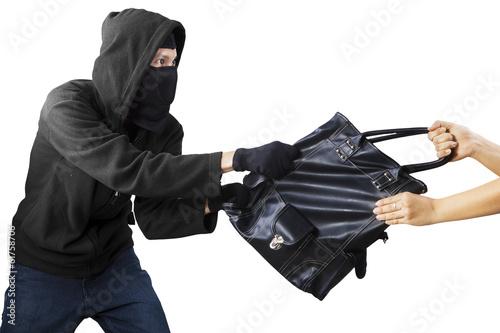 A thief stealing handbag Canvas Print