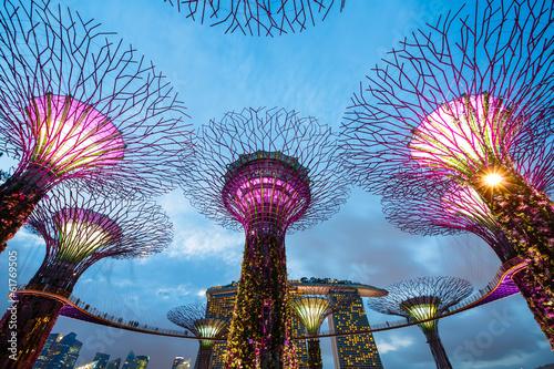 Tuinposter Singapore Big Trees, Singapour