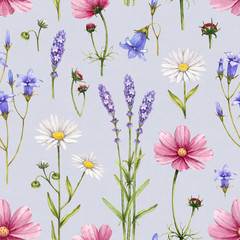 FototapetaWild flowers illustration. Watercolor seamless pattern