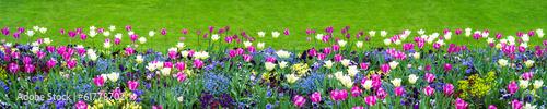 Recess Fitting Panorama Photos Blumenwiese als Hintergrund