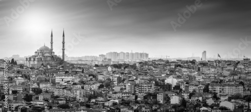 Istanbul Mosque with residential area in black and white Canvas Print