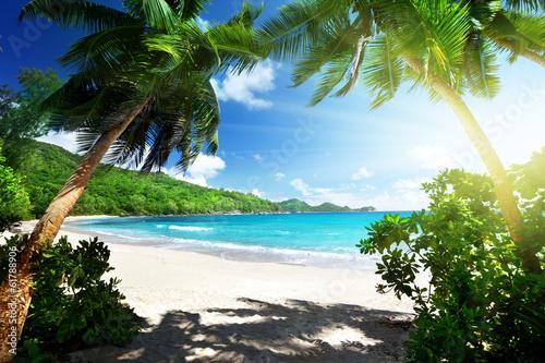Foto-Schiebegardine Komplettsystem - beach, Mahe island, Seychelles