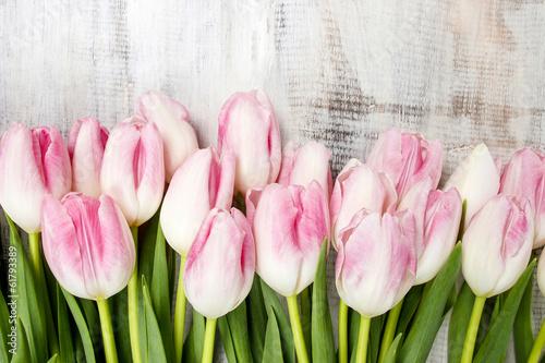 Foto-Lamellen (Lamellen ohne Schiene) - Beautiful pink and white tulips on wooden background. Copy space (von agneskantaruk)