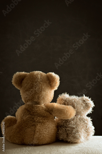 Two Teddy Bears Poster