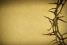 Crown Of Thorns Represents Jes...