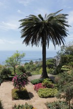 Botanical Garden Jardim Botani...