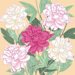Fototapeta Peonie Background with white and one pink peonies.Vector illustration