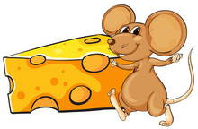 A Brown Mouse Beside The Big S...