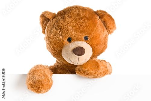 Fototapeta teddy bear behind whiteboard