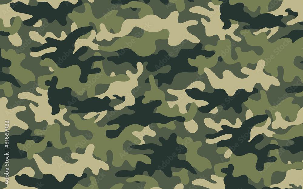 Fototapeta Camouflage