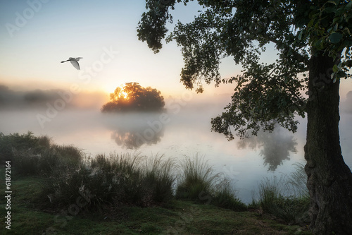 Spoed Foto op Canvas Zwart Beautiful Autumnal landscape image of birds flying over misty la