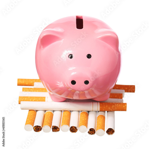 Piggy Bank on pile of Cigarettes isolated on white. Poster