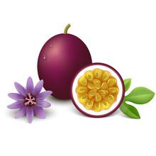 Passion Fruit Vector Illustrat...