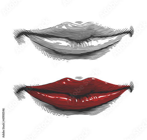 Fotografie, Obraz  Mouth with red lips in engraving style on transparent background
