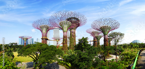 Gardens by the Bay. Singapore Wallpaper Mural