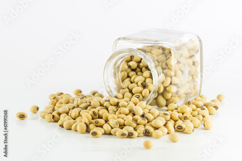 Fotografija  Bottle full of Soybeans