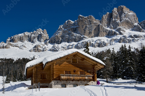 Chalet in the Dolomiti #61992598