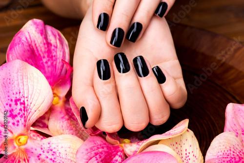 Photographie  Belles femmes mains avec manucure noir