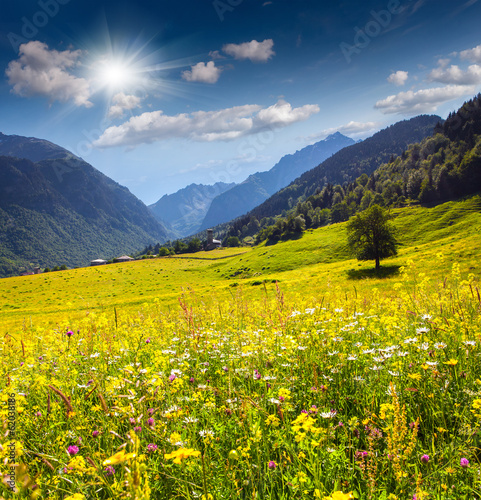 Photo Stands Melon Beautiful view of alpine meadows in the village Zhabeshi.