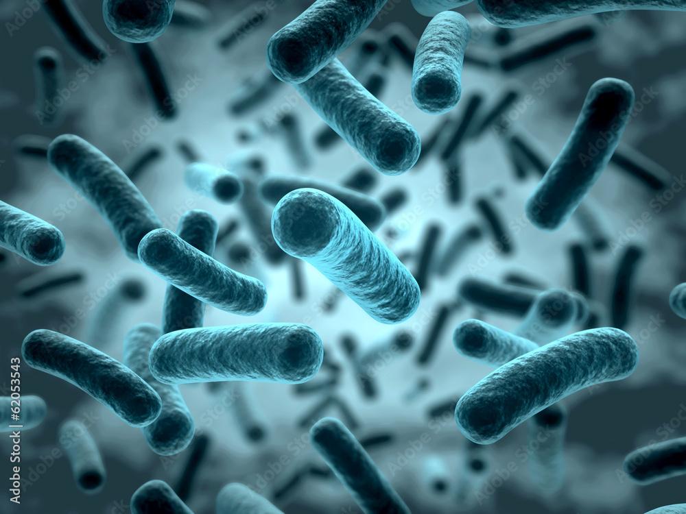 Fototapeta Bakterien 3D