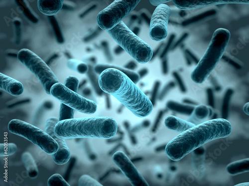 Fotografía  Bakterien 3D