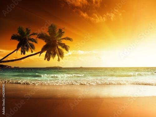 Foto auf Gartenposter Strand sunset on the beach of caribbean sea