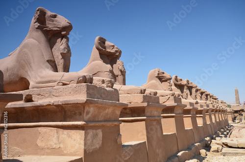 sfinksy-w-swiatyni-karnak-luxor-egipt