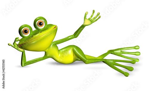 Photo green frog